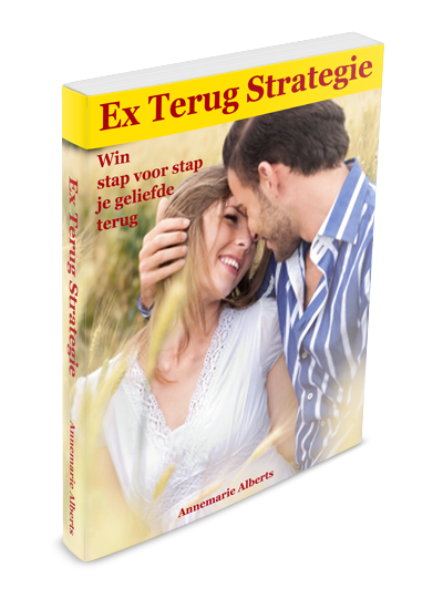 Ex Terug Strategie review